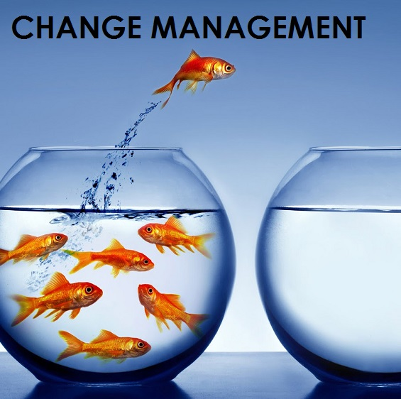 change management 1